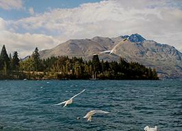 Фотовыставка «Новая Зеландия»