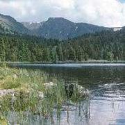 «Озеро Караколь. Алтай»